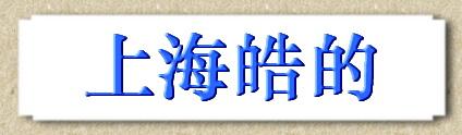 上海皓的电子商务有限公司